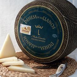 Spanischer Manchego-Käse (D.O.)