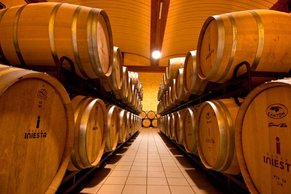Ein Crianza Rotwein lagert mindestens 12 Monate in Eichenfässern (hier in der Bodega Iniesta)