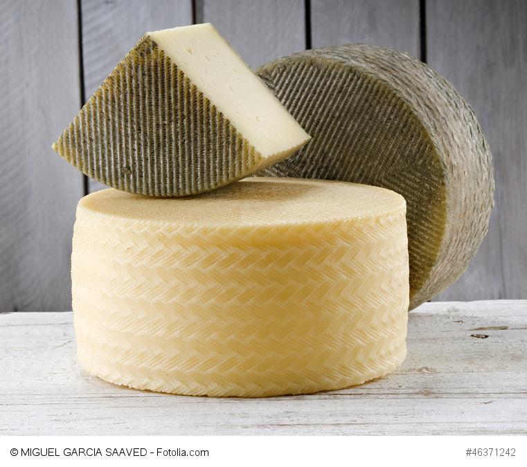 Spaniens berühmter Käse: Der Manchego D.O.